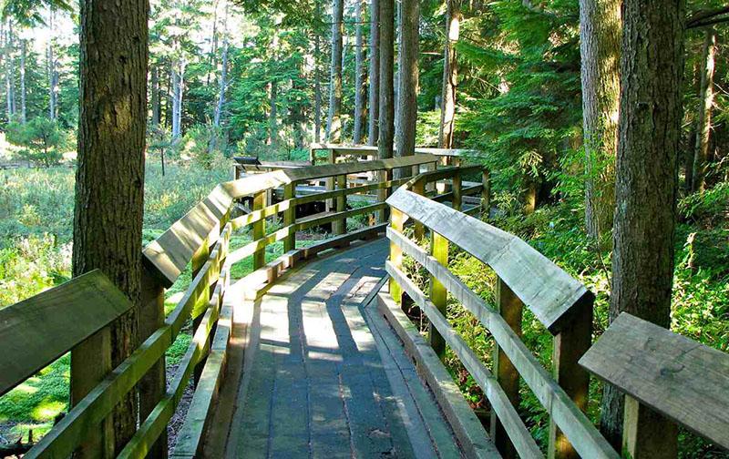 Sinalização de trilhas no Pacific Spirit Regional Park em Vancouver