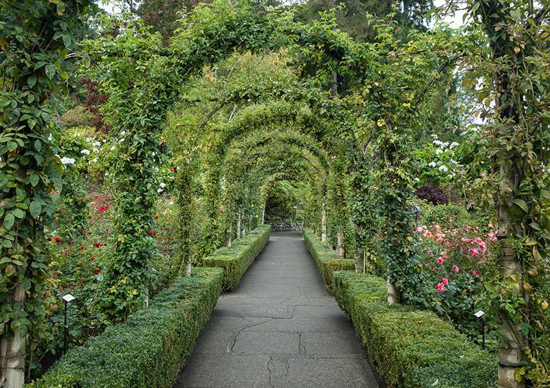 Caminhos dos Jardins de Butchart em Victoria