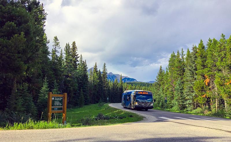Ônibus no Parque Nacional em Banff