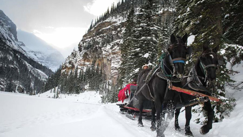 Trajeto do Passeio de Trenó em Banff