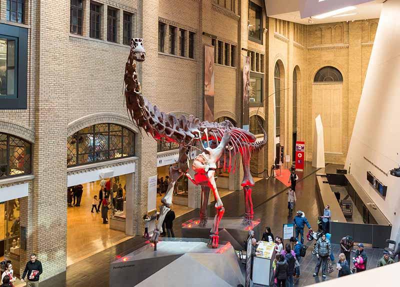 Free Pass no Museu Real de Ontário
