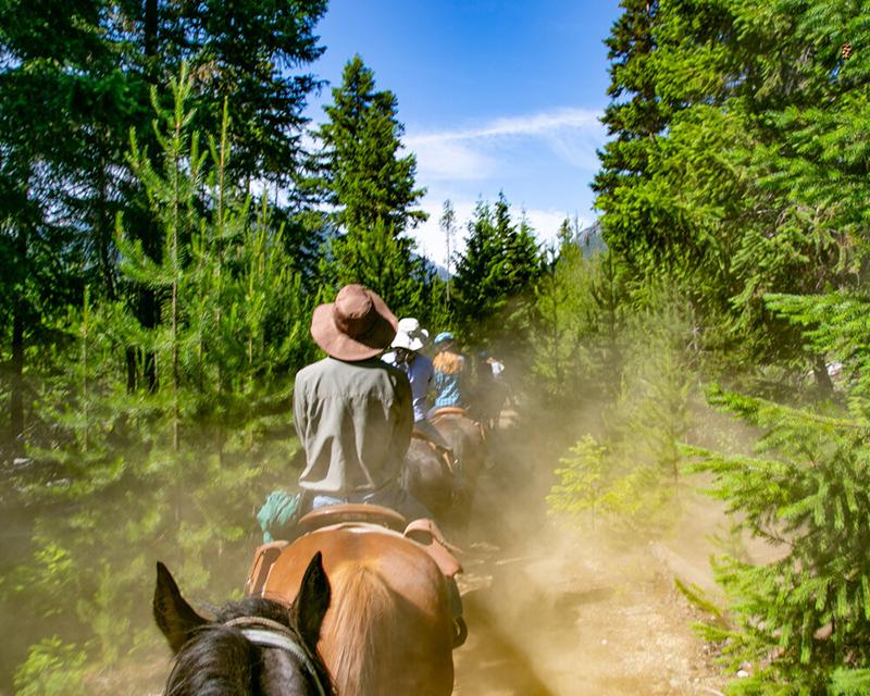 Passeio a cavalo em Whistler