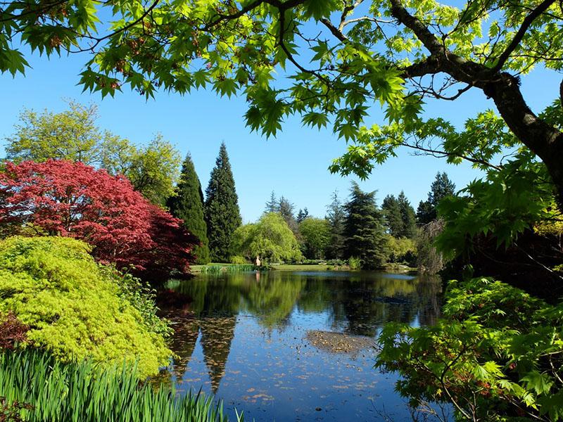Dia de verão no Jardim Botânico Van Dusen Vancouver