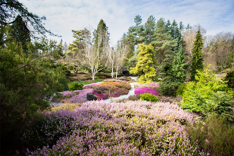 Jardim Botânico Van Dusen em Vancouver