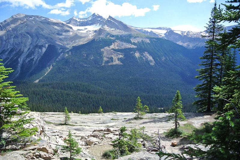 Beleza do Vale do Glaciar Stanley em Banff
