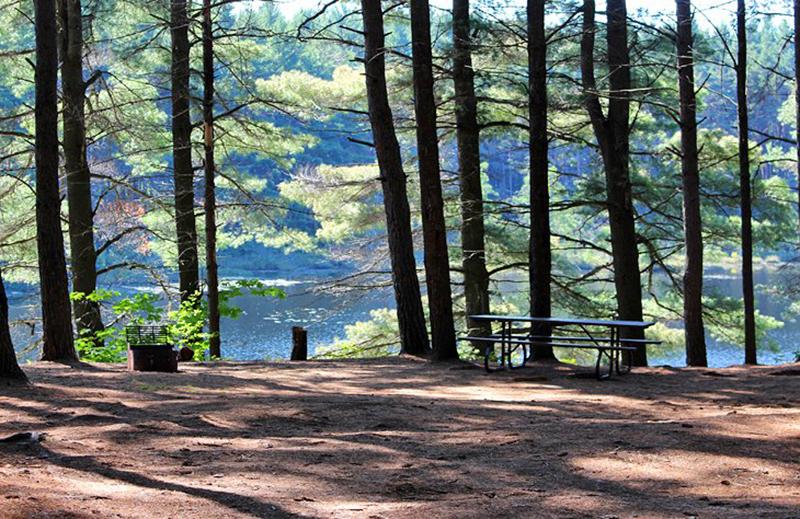 Algonquin Provincial Park em Toronto