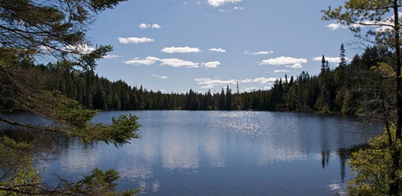 Lago no Algonquin Provincial Park em Toronto