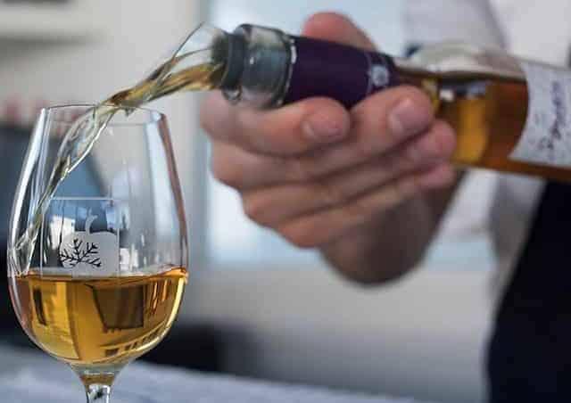 Degustação de vinhos em Quebec