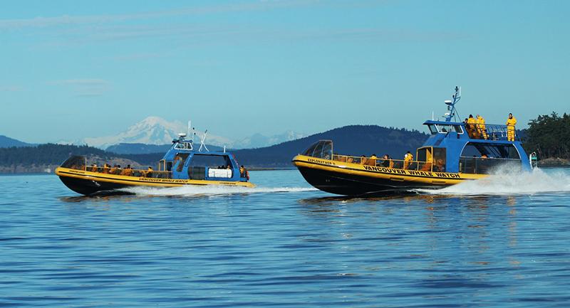 Barcos da excursão de observação de baleias em Vancouver
