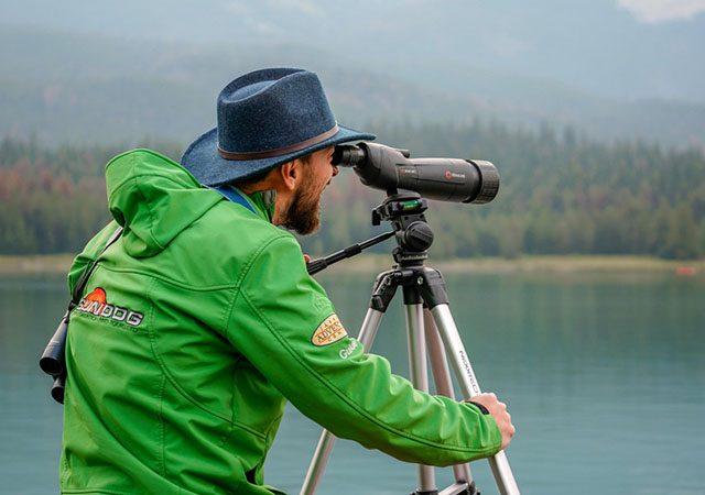 Passeio de observação da vida selvagem em Jasper